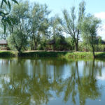 Садовая прямоугольная деревянная беседка Лотос 3х4 метра. Вместимость 25 человек.